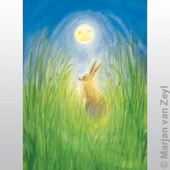 Obrázek Marjan van Zeyl - Zajíc za úplňku