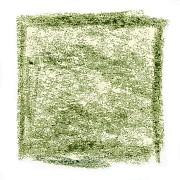 Pastely s rostlinnými extrakty Artemis