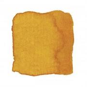 Akvarelka zlatě žlutá