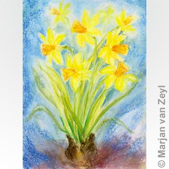 Obrázek Marjan van Zeyl - Narcisy