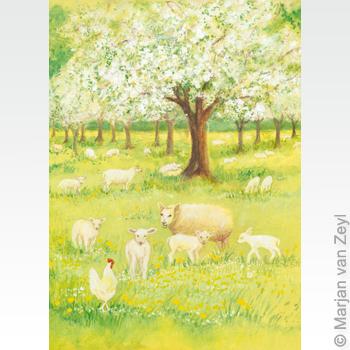 Obrázek Marjan van Zeyl - Ovečky v sadu
