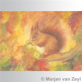 Obrázek Marjan van Zeyl - Veverka