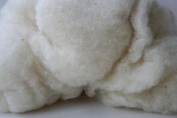 Ovčí vlna přírodní mykaná výplňová II. jakost - 50 g