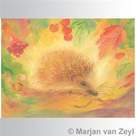 AMS Obrázek Marjan van Zeyl - Ježek