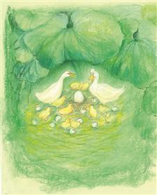 AMS Obrázek Marjan van Zeyl - Největší vajíčko