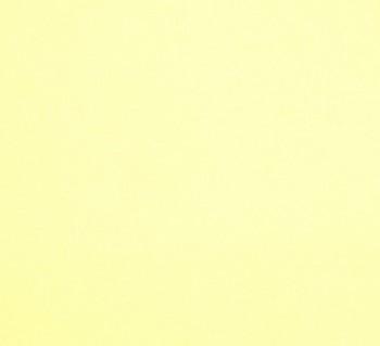 Aksamit jednobarevný - 25 x 25 cm - 565 žlutá pastelová